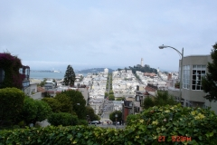 The Golden Gate bridge was so fogged in we didn't get any good photos but we got lots of Lombardi St